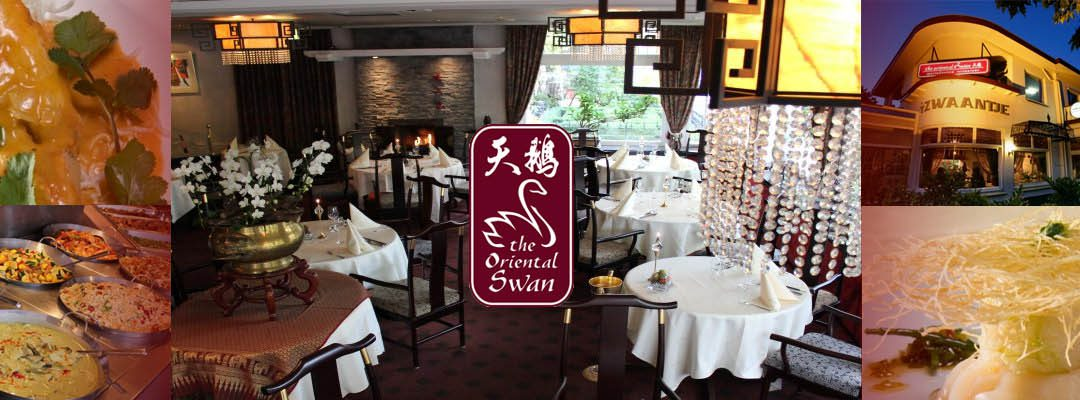 The Oriental Swan